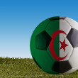 Algeria football — Stock Photo