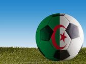 Algerien-Fussball — Stockfoto
