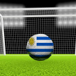 Soccer Uruguay — Stock Photo