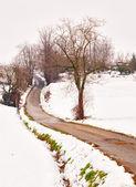 Cesta na sněhu — Stock fotografie