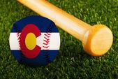 Colorado beyzbol — Stok fotoğraf