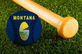 Beisebol de Montana — Fotografia Stock