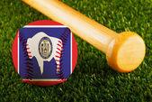 Wyoming Baseball — Stock Photo