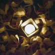 Candle in between flowers — Stock Photo