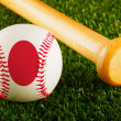 Japan Baseball — Stock Photo #47945271