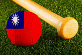 Taiwan Baseball — Stock Photo