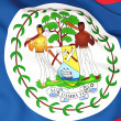 Flag of belize — Stock Photo #22742619