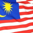 Flag of malaysia — Stock Photo #22821986