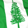 Flag of norfolk island — Stock Photo