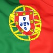 Flag of portugal — Stock Photo #22936468