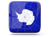 Square icon of antarctica — Stock Photo