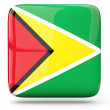 Square icon of guyana — Stock Photo