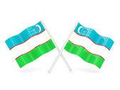 Flag of uzbekistan — Stock Photo
