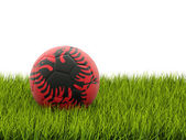 Football with flag of albania — Foto de Stock