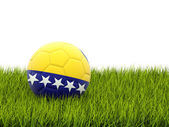 Football with flag of bosnia and herzegovina — Stock Photo