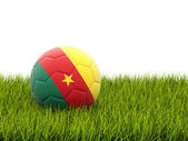 Football with flag of cameroon — Stock Photo