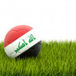 Football with flag of iraq — Stock Photo