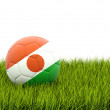 Football with flag of niger — Stock Photo