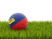 Calcio con la bandiera del liechtenstein — Foto Stock