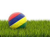 футбол с флагом маврикия — Стоковое фото