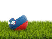 Football with flag of slovenia — Foto de Stock