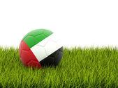 Football with flag of united arab emirates — Stock Photo