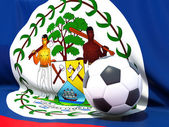 Flag of belize with football in front of it — 图库照片