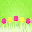 Floral Background with Pink and Yellow Tulips — Stockvectorbeeld
