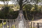 Portrait of traveller standing on bridge — Stock Photo