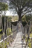 Traveller in sunglasses standing on suspension bridge — Stock Photo