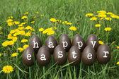 The Easter eggs — Stockfoto