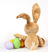 The Easter Bunny — Stockfoto