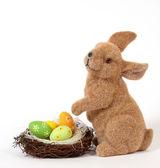 The Easter Bunny — Stockfoto