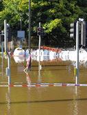Flooded York City street — Stock Photo