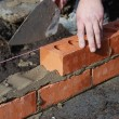 Bricklayer — Stock Photo #24588145