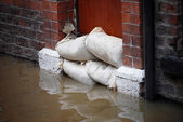 Flood defences — 图库照片