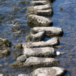 stepping stones&quot — Stock Photo