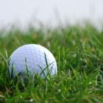 Golfball in grass — Stock Photo