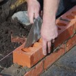 Brick layer  — Stock Photo