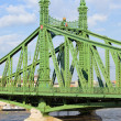 Stock Photo: Liberty Bridge in Hungary
