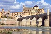 Mezquita and Roman Bridge in Cordoba — Stockfoto