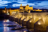 Cathedral Mosque and Roman Bridge in Cordoba — Stock Photo
