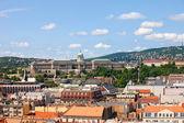 Budapest Cityscape and Buda Castle — Stock Photo
