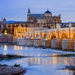 Morning in Cordoba - Stock Photo