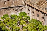 Patio de los Naranjos of Seville Cathedral — Stock Photo