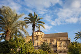 Courtyard Garden and Mezquita Cathedral of Cordoba — Stock Photo