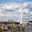 Erasmus Bridge in Rotterdam — Stock Photo #31875135