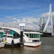 Erasmus Bridge in Rotterdam Downtown — Stock Photo