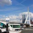 Erasmus Bridge in Rotterdam City Downtown — Stock Photo