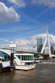 Ponte erasmus nel centro città di rotterdam — Foto Stock